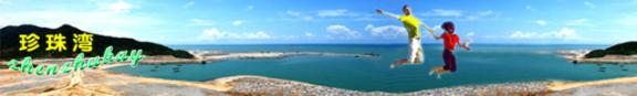 珍珠湾全球网