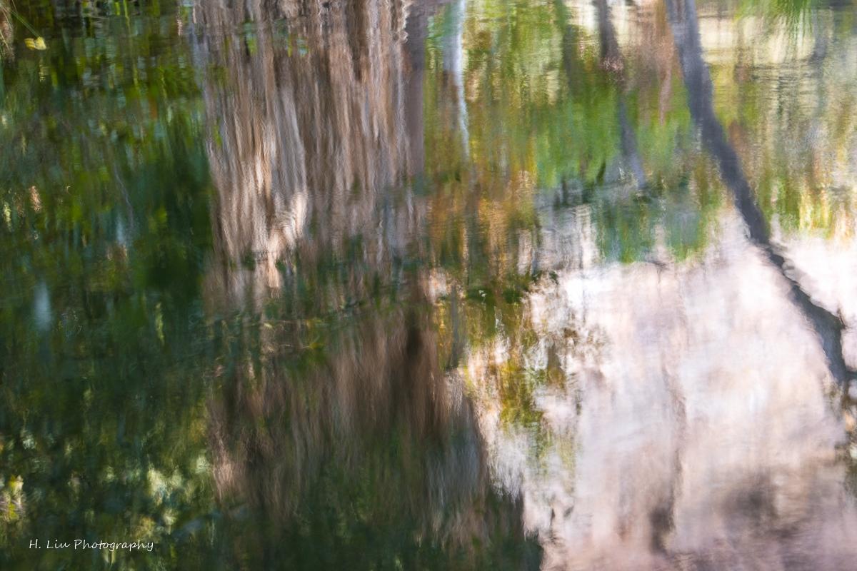 Palm SpirngsDSC_6190.jpg